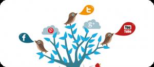 Redes sociales Mediterranea Services